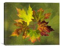 Autumn composition, Canvas Print