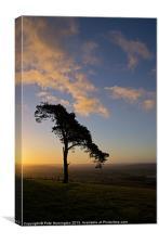 Raddon hilltop at dawn, Canvas Print