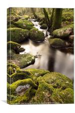 Becka Brook - Dartmoor, Canvas Print