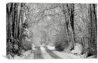 Snowy lane - in mono, Canvas Print