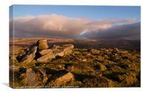 Dartmoor view, Canvas Print