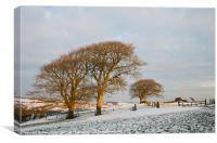 Raddon in the snow, Canvas Print