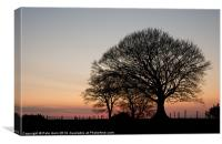 Sunset shilouette, Canvas Print