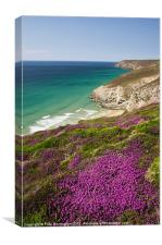 Cornish coast near Porthtowan, Canvas Print