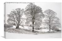Wintery scene, Canvas Print