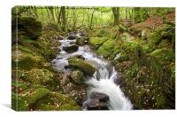 River Lyd on Dartmoor, Canvas Print