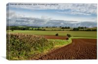 Halberton Farmland, Canvas Print