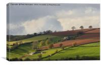 Caseberry Downs in Devon, Canvas Print