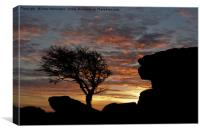 Holwell Tor and Lone tree on Dartmoor, Canvas Print