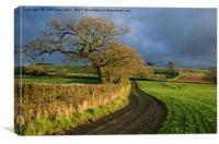 Raddon Top in Mid Devon, Canvas Print