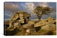 Holwell Tor on Dartmoor, Canvas Print
