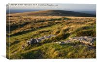 Hameldown on Dartmoor, Canvas Print