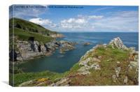 Near Ivy Cove on coast path near Brixham, Canvas Print