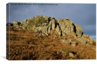 Greator Rocks on Dartmoor, Canvas Print