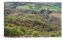 Exmoor woods, Canvas Print