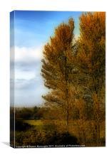 Golden Fall, Canvas Print