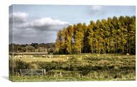 Autumn Suffolk Scene, Canvas Print