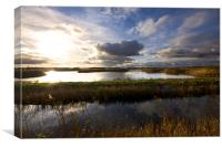 Minsmere Landscape Suffolk, Canvas Print