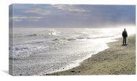 A Walk On The Beach, Canvas Print