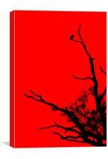 Bird In Tree., Canvas Print