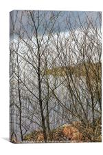 Beautiful Lake District View Through Bare Branches, Canvas Print
