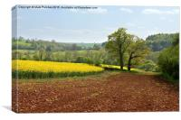 Cotswolds Landscape and Large Country House, Canvas Print