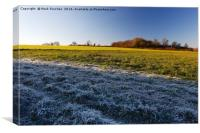 Winter Frosty Grass Landscape with Vibrant Blue Sk, Canvas Print