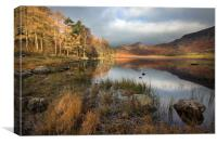 An Autumnal Blea Tarn, Canvas Print