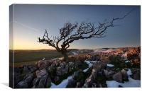 Last Throws Of Winter On Malham Moor, Canvas Print