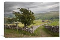 The Pennine Way Crossing Kisdon Fell, Canvas Print
