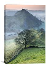 Parkhouse Hill, Canvas Print