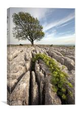 Malham Majesty, Canvas Print