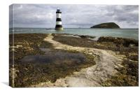 Black Point & Puffin Island, Canvas Print