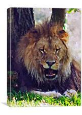 Lion painting, Canvas Print