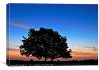 Windsor sunrise, Canvas Print