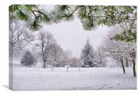 Walking In A Winter Wonderland, Canvas Print