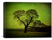 Old Oak Tree, Canvas Print