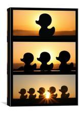Duck Fun In The Sun! - Triptych, Canvas Print