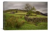 Moody Muker Meadows, Canvas Print