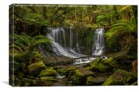 Horseshoe Falls, Mountfield National Pk, Tasmania, Canvas Print