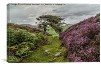 The Gnarly Tree & Heather Of Grinton Moor