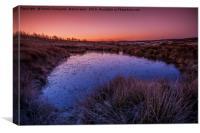 Pond Sunrise, Canvas Print