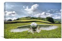 Dalescape ~ Snowy Owl/The Dales Composition, Canvas Print