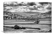 Dalescape ~ Swaledale, The Dales, Black & White, Canvas Print