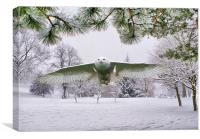 Snowy Owl In Winter Wonderland, Canvas Print