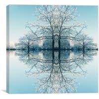 Winter Freeze, Canvas Print