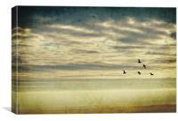 Skies, Canvas Print