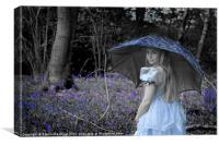 Blue Belle, Canvas Print