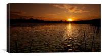 Golden Sunrise, Canvas Print
