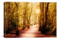 Path, Canvas Print